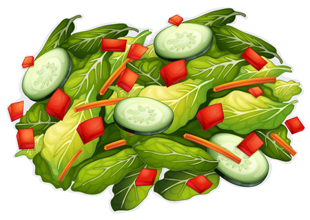 Illustration of a closeup salad Vector
