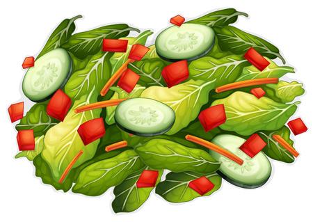 Illustration of a closeup salad Vector