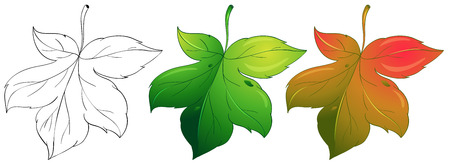 changing: Illustration of a drawing leaf