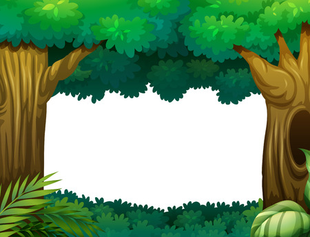 amazon forest: Illustration of a forest
