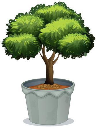 potting soil: Ilustration of a potted plant Illustration