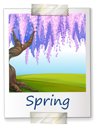 Illustration of spring Vector
