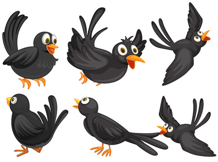 Illustration of a set of black birds Vector
