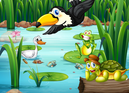 Illustration of a pond with animals Vector