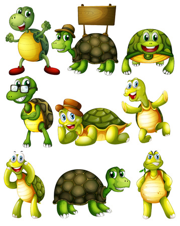Ilustration of a set of turtle with actions 일러스트