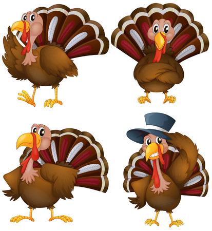 Illustration of a turkey set Vector
