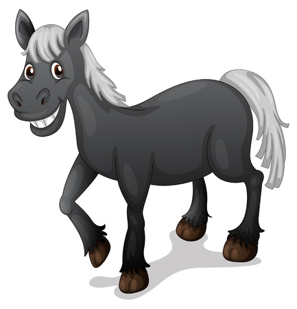 pony ride: Illustration of a black horse