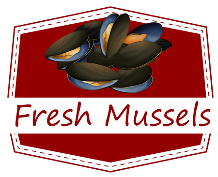 raw material: Illustration of fresh mussels