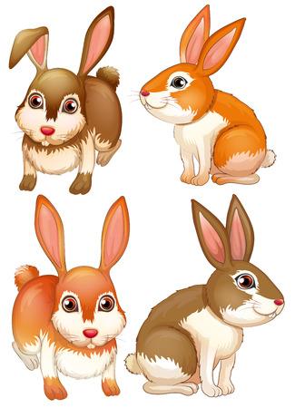 Ilustración de cuatro conejos Vectores