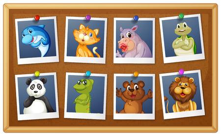 Illustration of set of animals phot