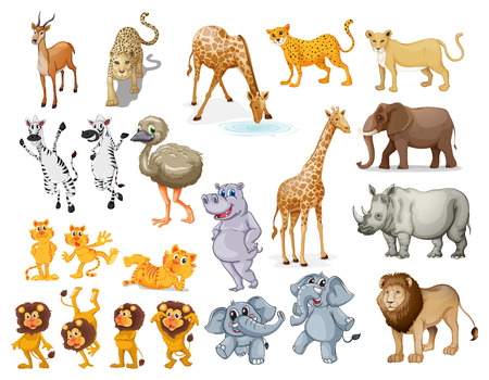 Illustration of many wild animals Illustration