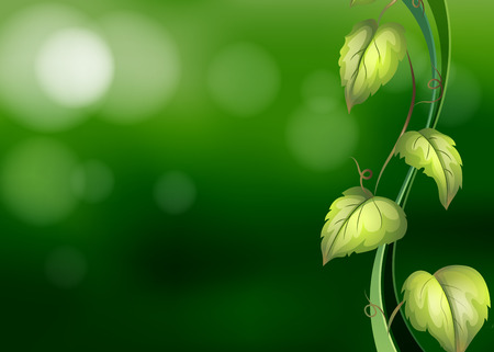 Illustration of a vine with green background