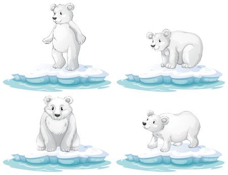 northpole: Illustratie van een set van ijsbeer