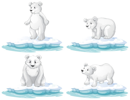 Illustration of  a set of polar bear Vector