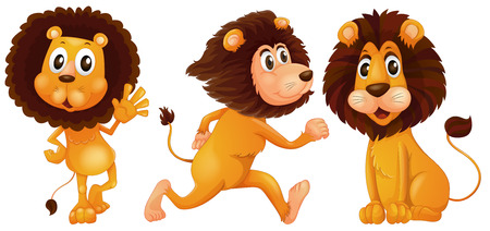 Illustration of a set of a lion Vector