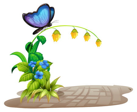 brick road: Illustration of a butterfly on flowers