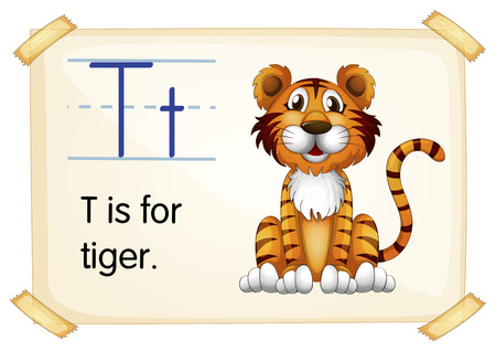 Illustration of a flashcard with letter T Vector