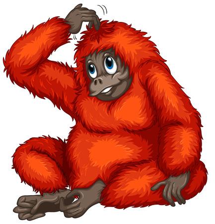 Illustration of an orangutan 矢量图像