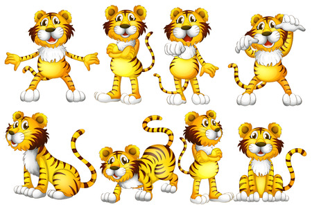 Illustration of a group of tigers Vector