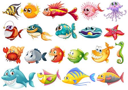 cangrejo caricatura: Ilustración de diferentes tipos de peces Vectores