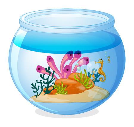 tank fish: Illustration of a fish tank and seahorses