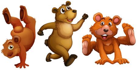 strenght: Illustration of a set of bears Illustration