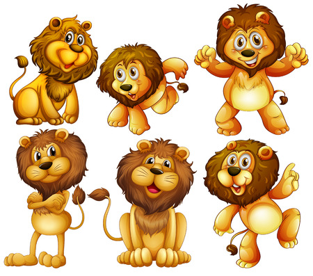 Illustration of lion set Vector