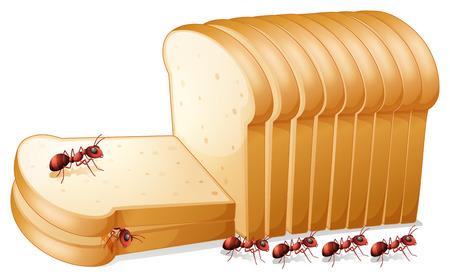 hormiga caricatura: Ilustraci�n de hormigas en el pan Vectores