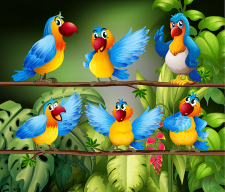 birds scenery: Illustration of many parrots in the jungle