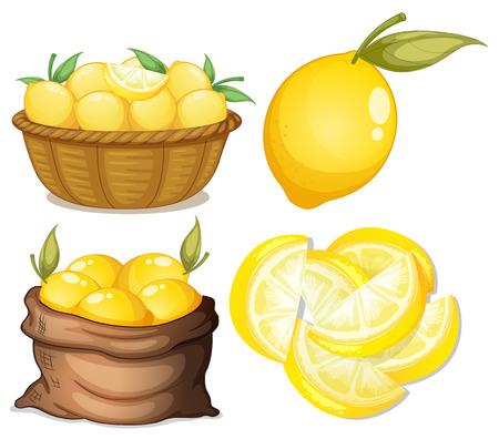 canastas con frutas: Ilustración de un conjunto de limón Vectores