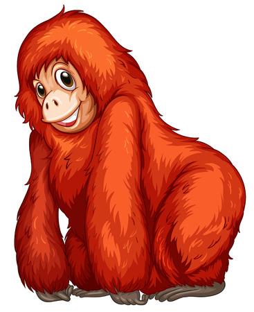 conserved: Illustration of an gorilla