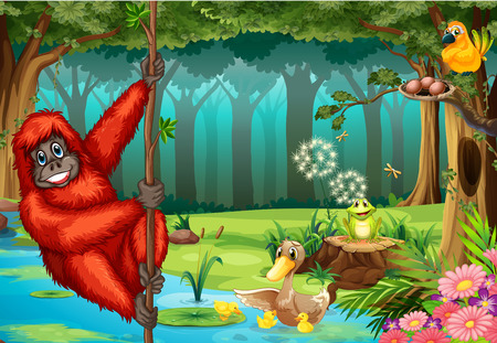 Illustration of an orangutan swinging in the jungle Vector
