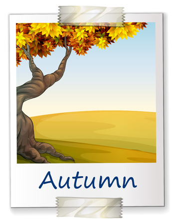 square root: Illustration of a photo of autumn Illustration