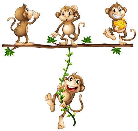 Illustration of monkeys swinging on a vine Illustration
