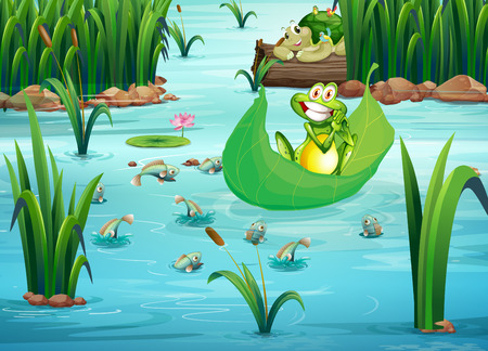 Illustration of a playful frog and a turtle at the pond