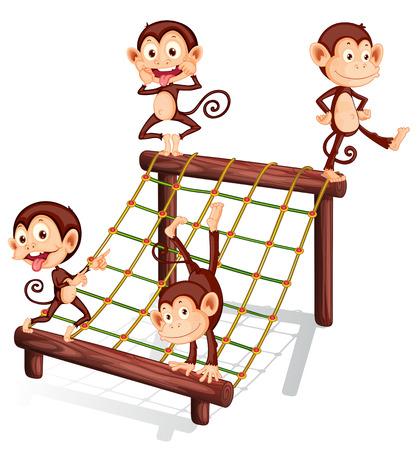 Illustration of the four playful monkeys on a white background Illustration