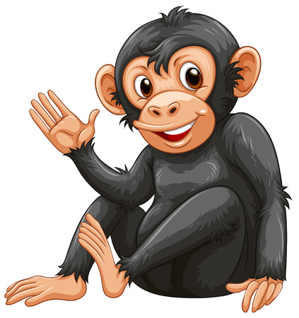 ancestor: Illustration of a chimpanzee on a white background Illustration