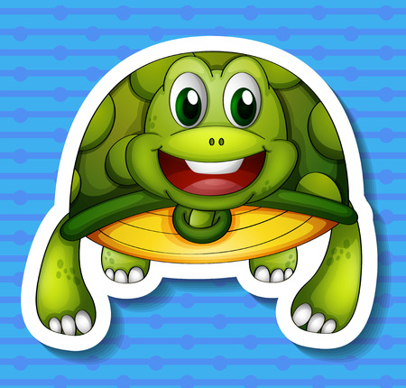 freshwater turtle: illustration of a turtle with a background