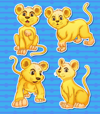 cub: Illustration of lion cubs set