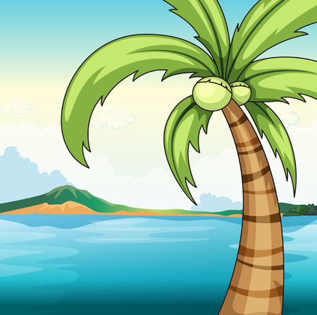 coconut tree: Illustration of a coconut tree by the ocean