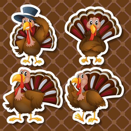 turkeys: Illustration of a set of turkeys
