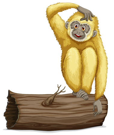 drywood: Illustration of a single gibbon on a log