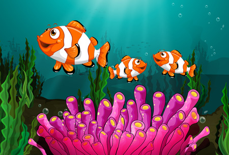 Illustration of clowfish under the sea Vector