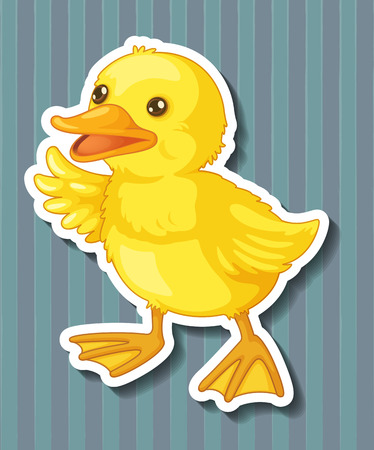 duckling: Illustration of a closeup duckling with blue background Illustration