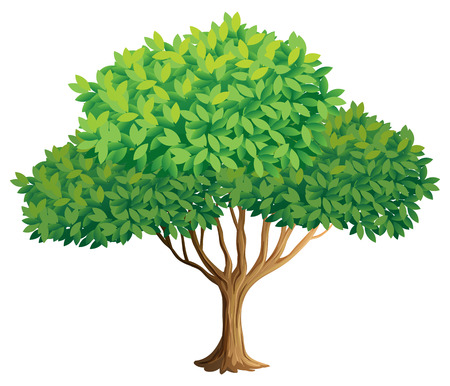 Illustration of a closeup tree Ilustração