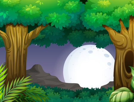 Illustration of a forest at nighttime Vector