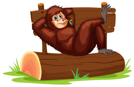 orangutan: Illustration of a chimpanzee relaxing on a log