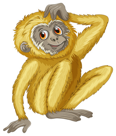 Illustration of a close up gibbon Vector