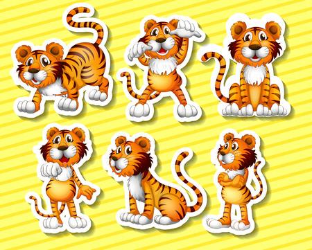 tigre caricatura: Ilustraci�n de un tigre con diferentes poses Vectores