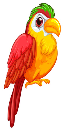 Illustration of a colorful parrot